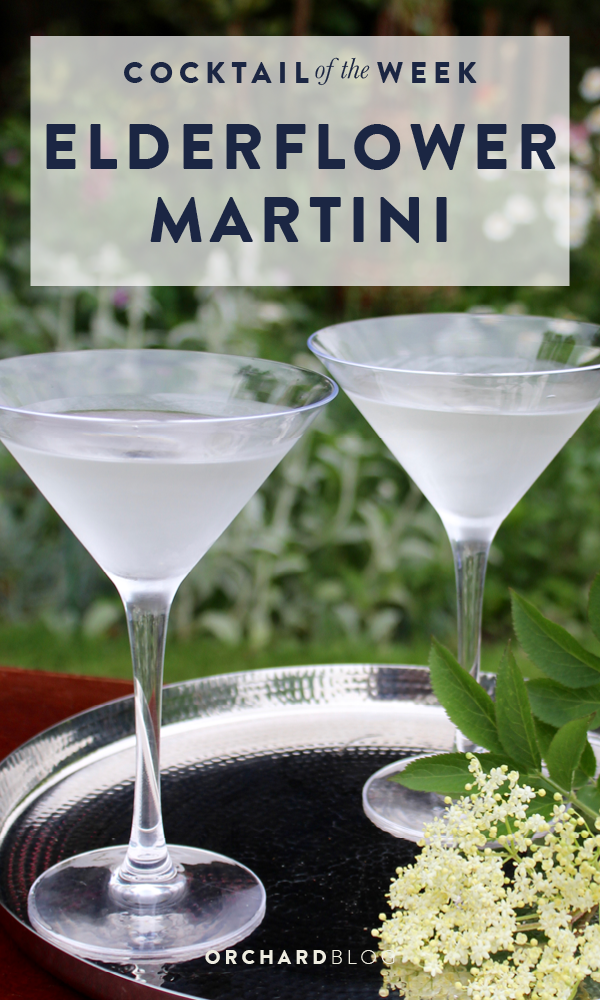 Orchard Blog | Elderflower Martini