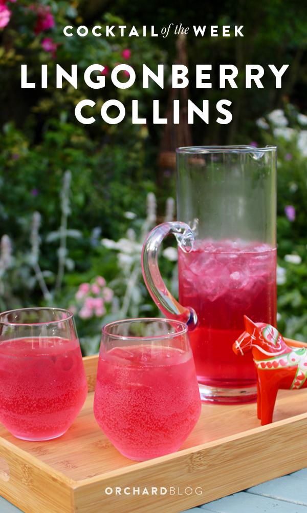 Orchard Blog | Lingonberry Collins