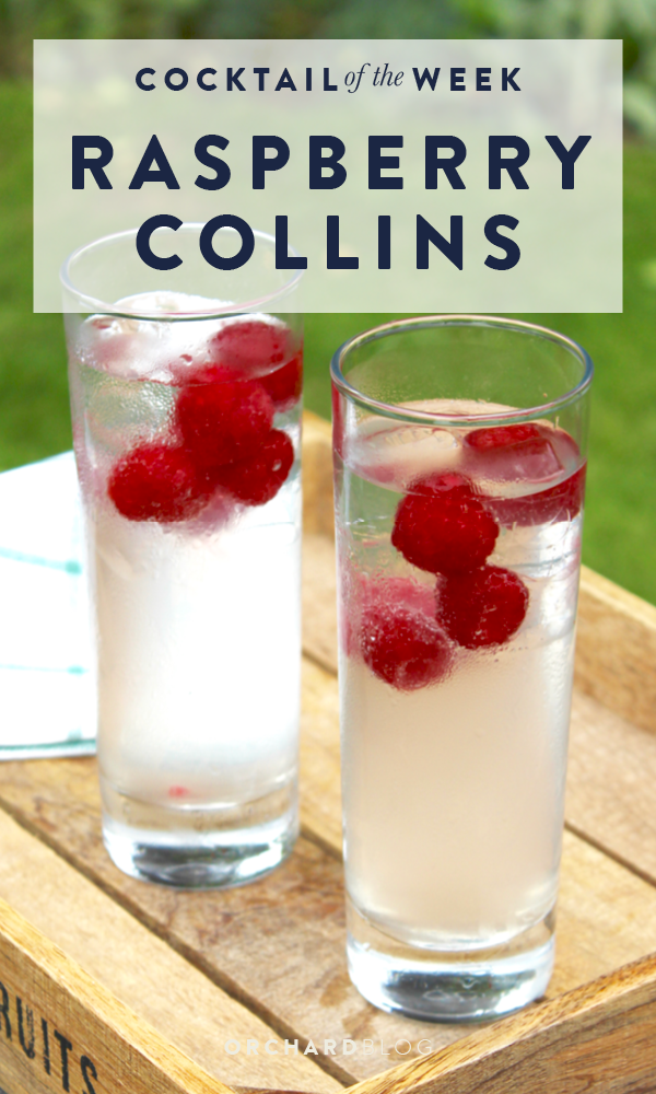 Orchard Blog | Raspberry Collins