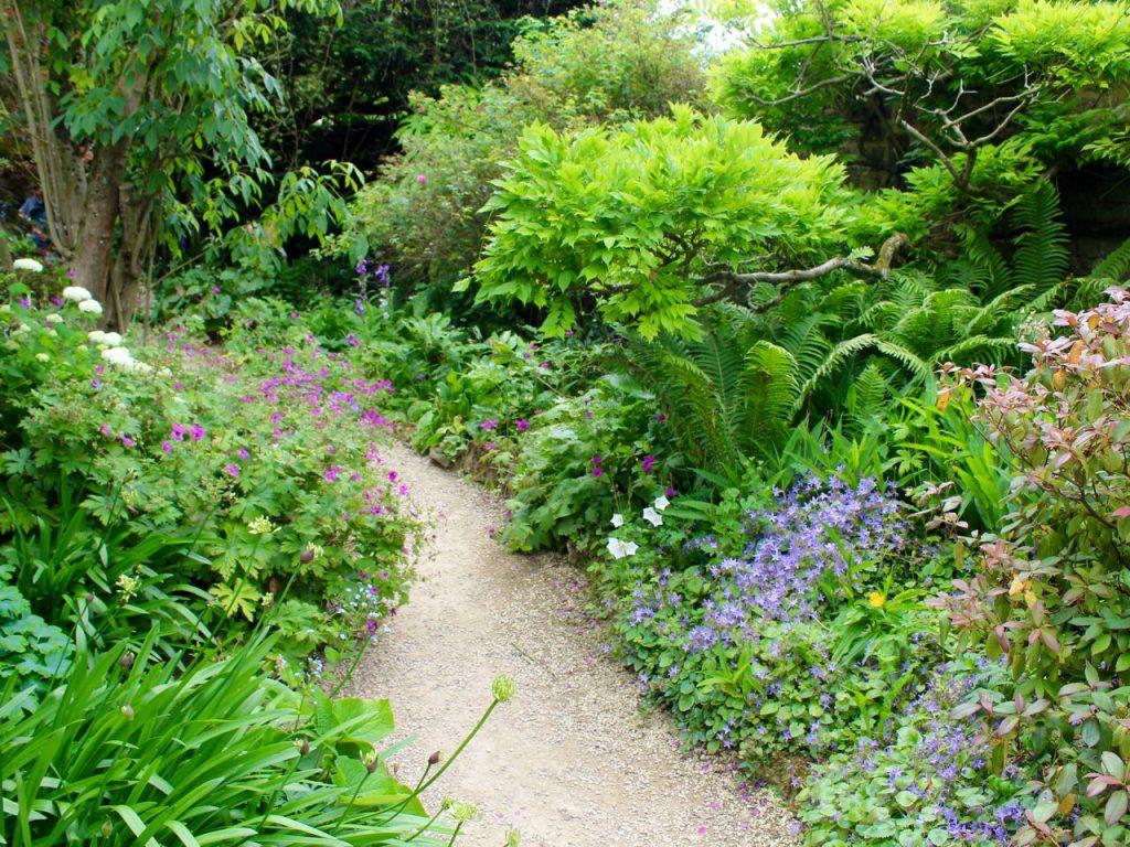 Hidcote Manor Garden 12