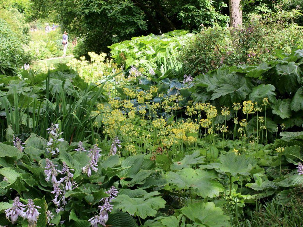 Hidcote Manor Garden 7