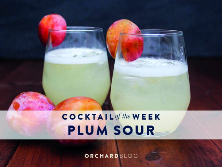 Plum Sour Cocktail