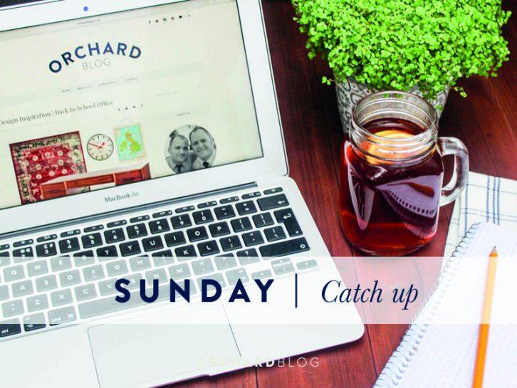 Sunday Catch Up