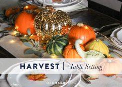 Autumn harvest table setting