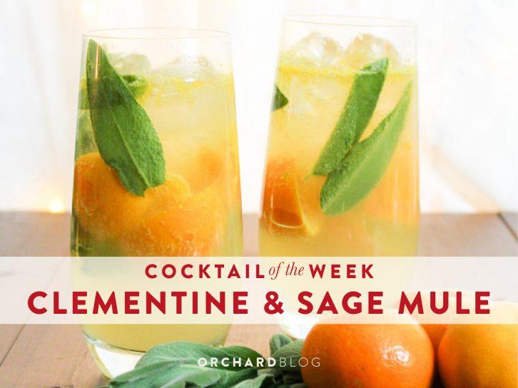 clementine sage mule