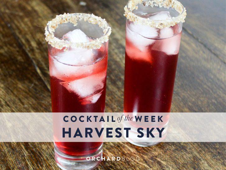 Harvest Sky Cocktail