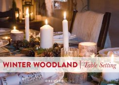 Scandinavian Inspired Winter Woodland Table Theme